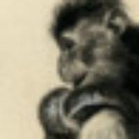 Profilbild för BjörnJhn