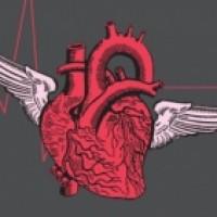 Grupplogga för Mitt bultande hjärta av Alf Kjetil Walgermo – 21 oktober-3 november
